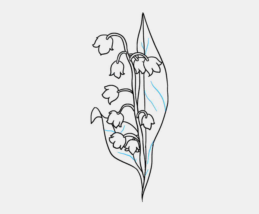 lily of the valley clipart, Cartoons - How To Draw A Lily Of The Valley - Simple Lily Of The Valley Drawing