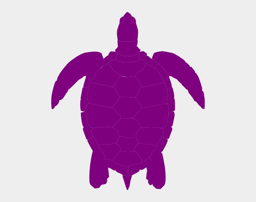 sea turtle clip art, Cartoons - Purple Turtle Png - Sea Turtle Clip Art