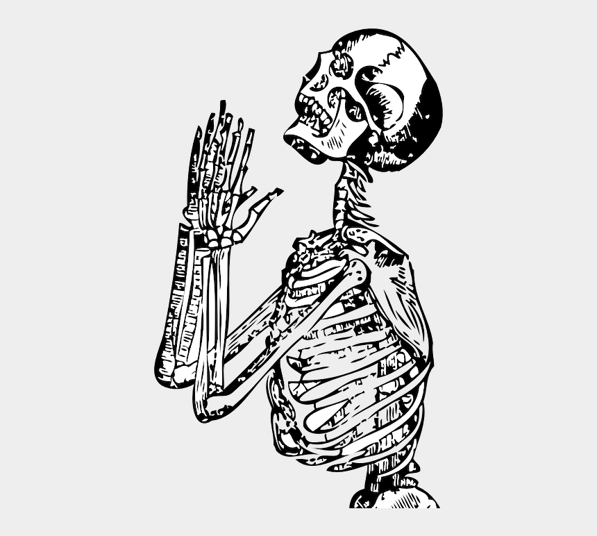 skeleton clip art, Cartoons - Killer Drawing Skeleton - Human Skeleton Line Drawing