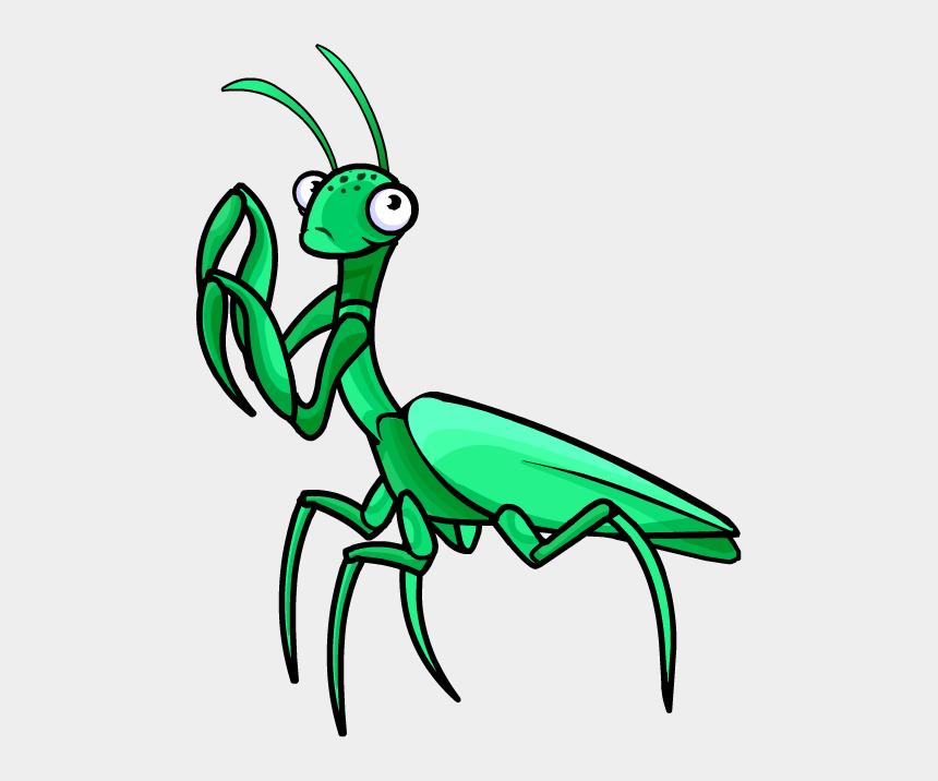 praying clipart, Cartoons - Praying Mantis Clipart - Praying Mantis Clipart Png