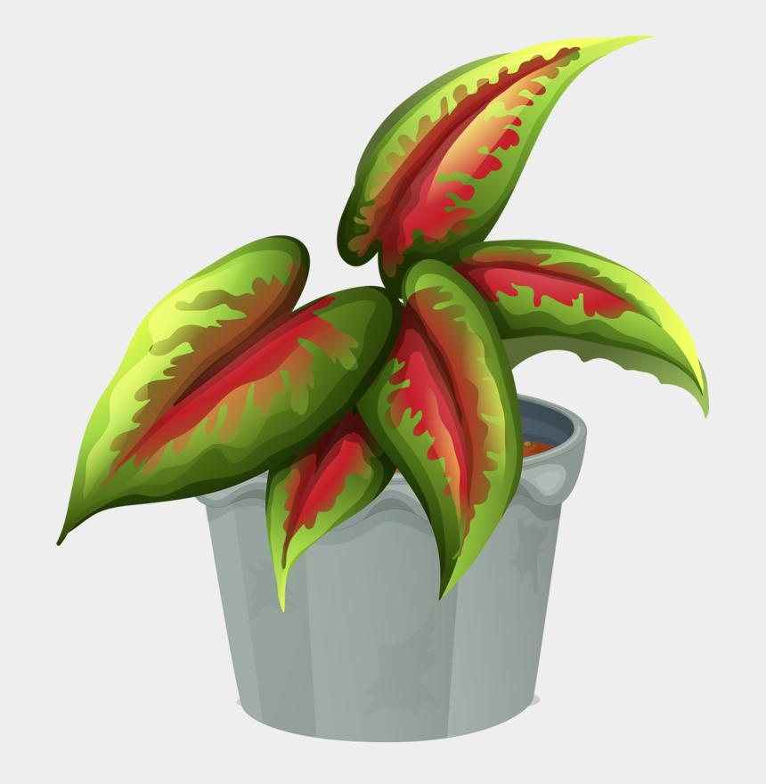 garden clip art, Cartoons - Cactus, Garden Clipart, Madhubani Art, Clips, Trees - Plantas Terrestres Y Sus Nombres