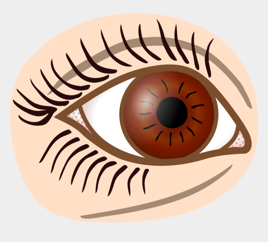 eyelashes clipart, Cartoons - Eyelash Drawing Computer Icons Iris - Auge Clipart Schwarz Weiß