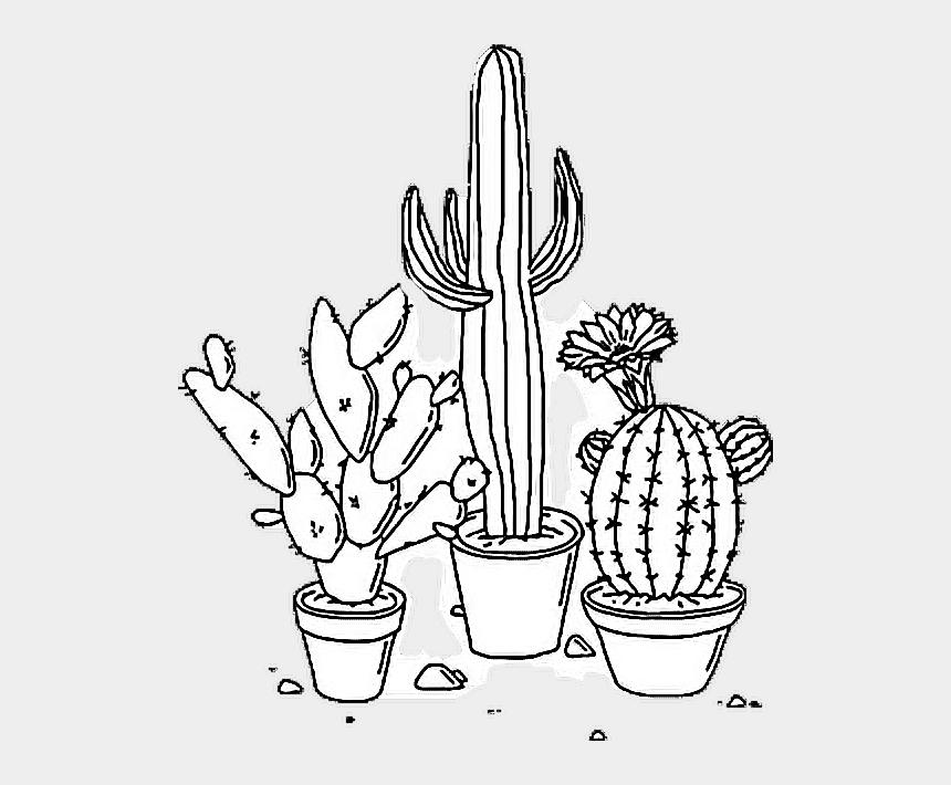 cactus clip art, Cartoons - White Drawing Cactus - Aesthetic Tumblr Black And White