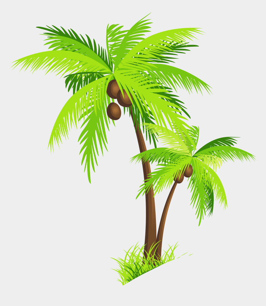 palm trees clipart, Cartoons - Beach - Coconut Tree Clipart