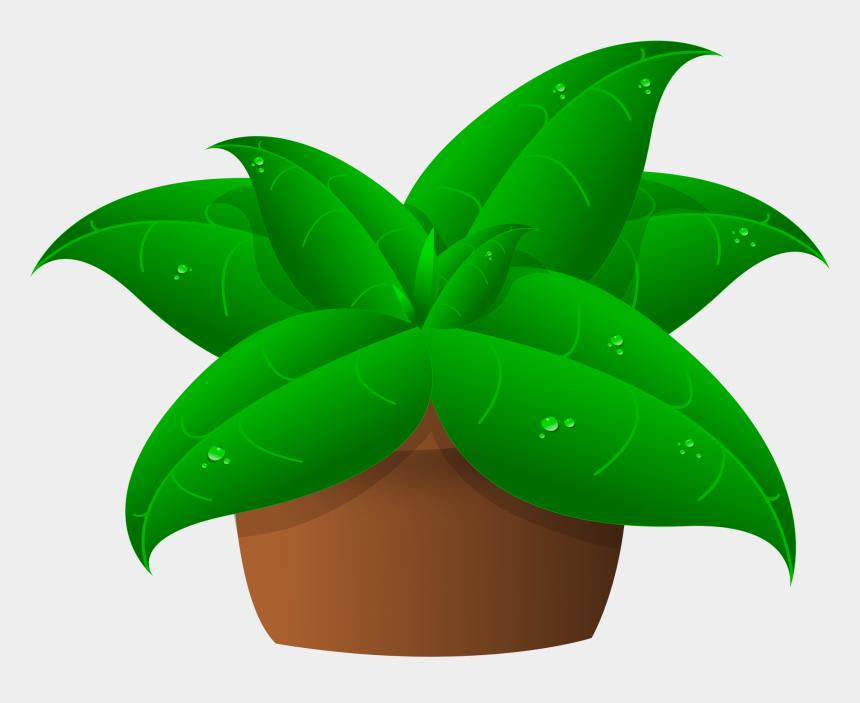 plant clip art, Cartoons - Plant Clipart Kid - Clip Art Of Plant