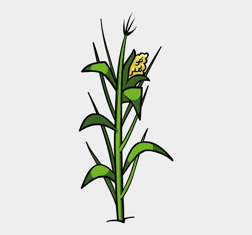 plant clip art, Cartoons - Corn Plant Png File - Corn Plant Png