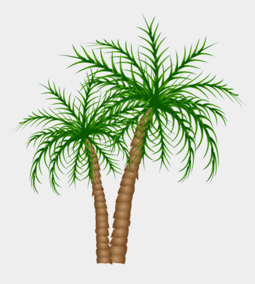 palm trees clipart, Cartoons - Palm Tree Png, Palm Trees, Picture Tree, Tree Branches, - Dates Tree Png File