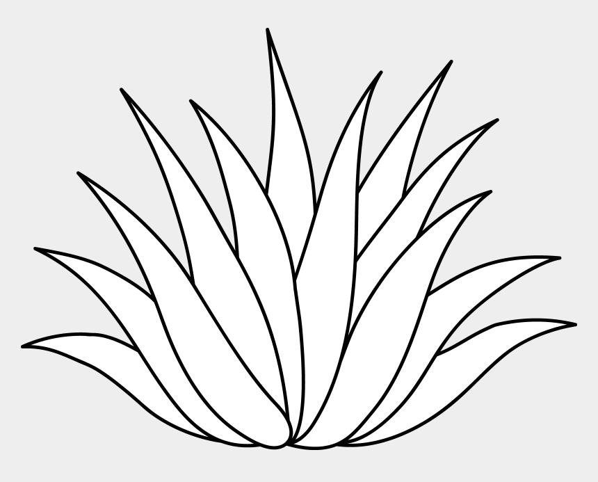 cactus clip art, Cartoons - Aloe Drawing Cactus - Aloe Vera Drawing Easy