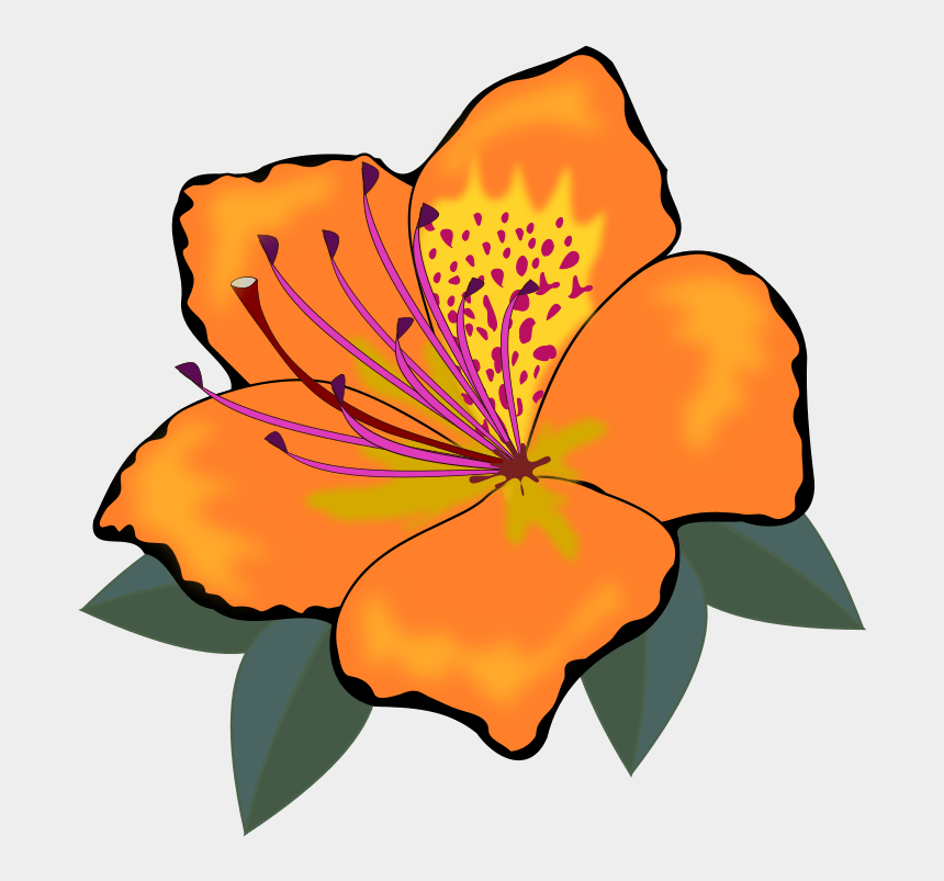 plant clip art, Cartoons - Clip Art, Flor, Flora, Flores, Flower, Nature, Plant - Orange Flower Clipart
