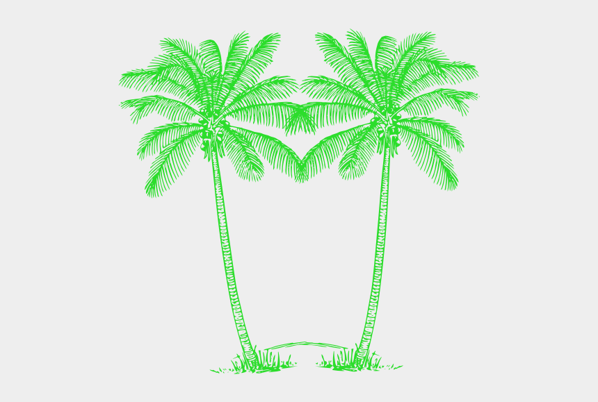 palm trees clipart, Cartoons - Palm Tree Clipart Double - Green Palm Tree Png