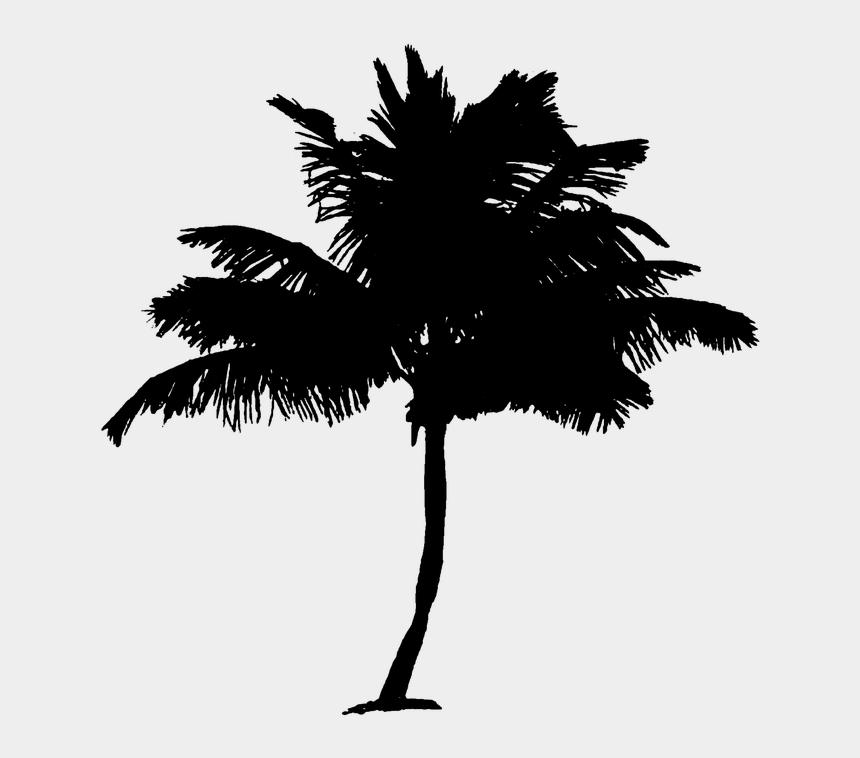 palm trees clipart, Cartoons - Palm Tree Clipart Pohon Kelapa - Palm Tree Stickers