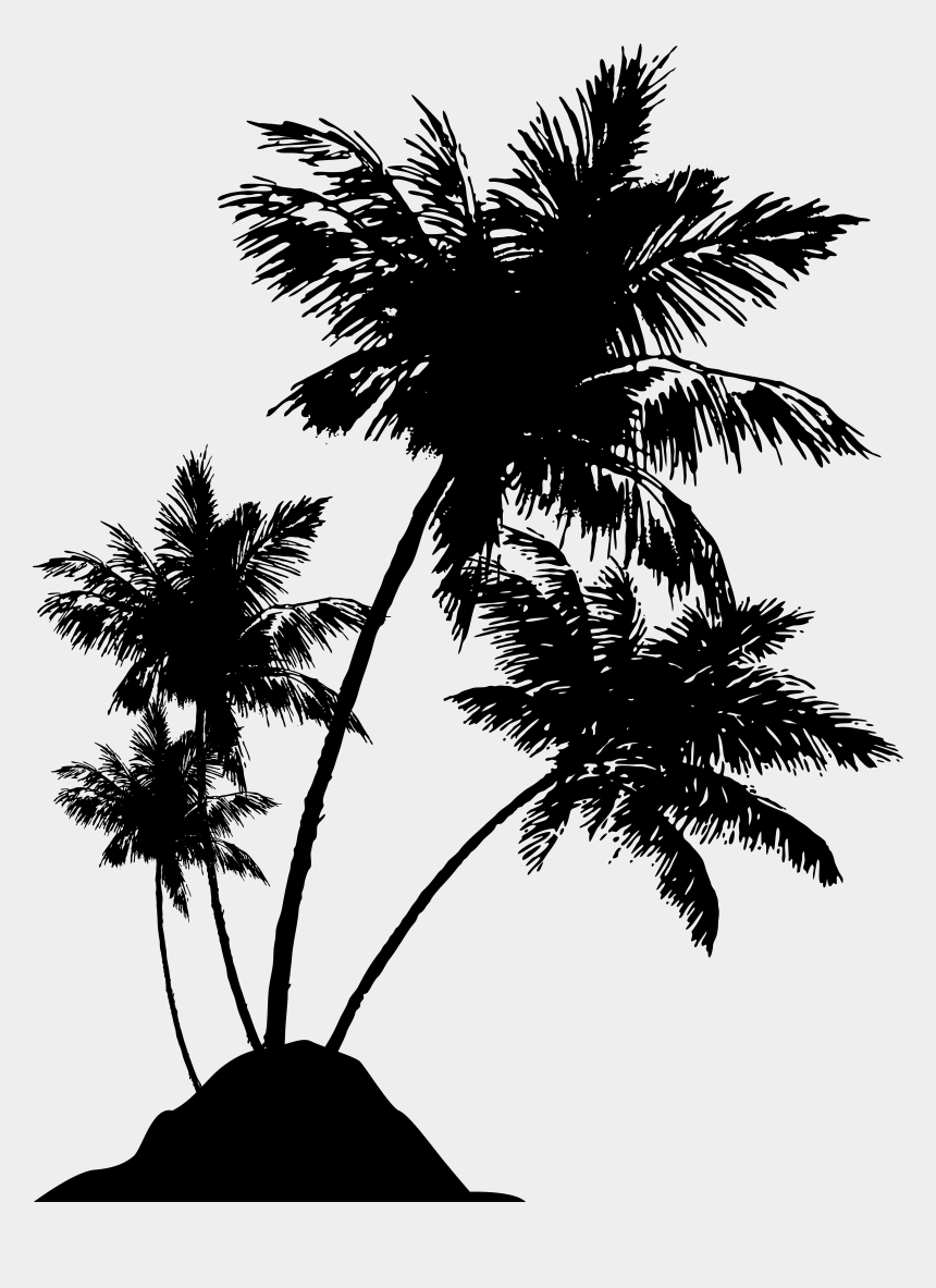 palm trees clipart, Cartoons - Palm Tree Clipart Detailed - Beach Palm Tree Silhouette Png
