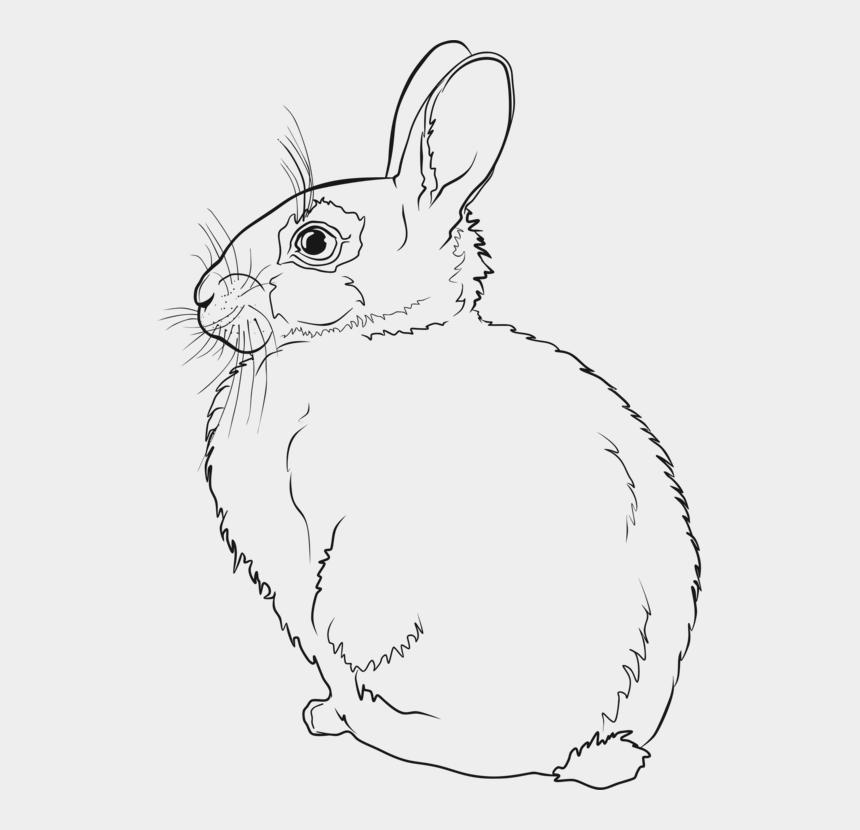 easter bunny clip art, Cartoons - Hare Easter Bunny Rabbit Line Art Drawing Cc0 - Rabbit Line Art