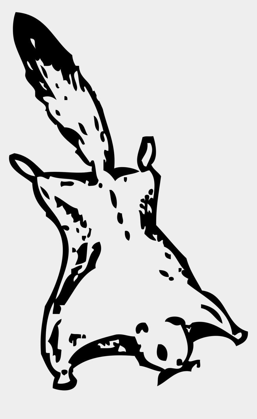 squirrel clip art, Cartoons - Clip Art Flying Squirrel