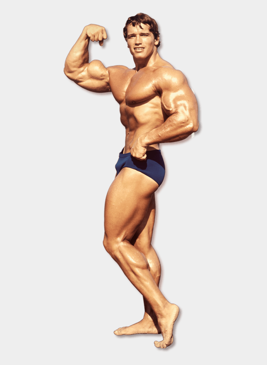 bodybuilders clipart, Cartoons - Bodybuilding Png File - Arnold On The Beach