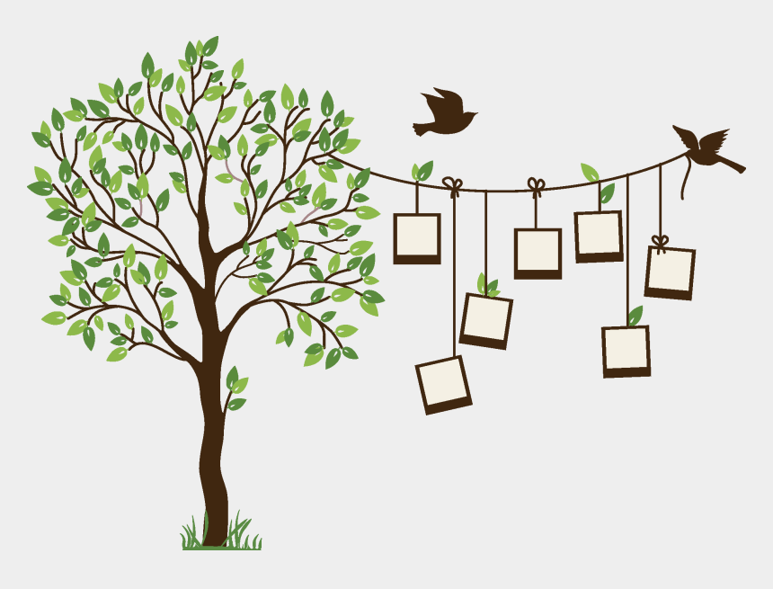 Family Tree Png Background Image Easy Wall Painting Designs Tree