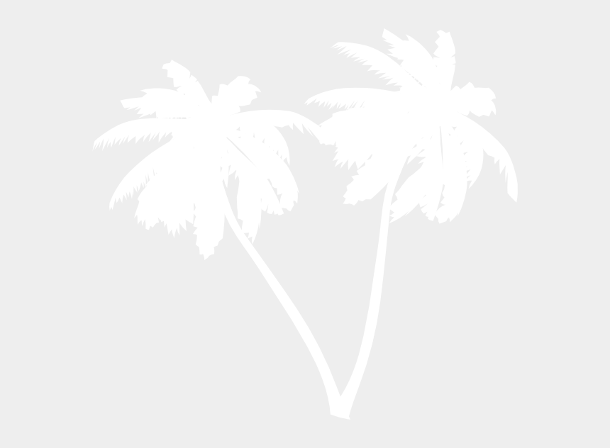 coconut tree clipart black and white, Cartoons - White Palm Leaf Png