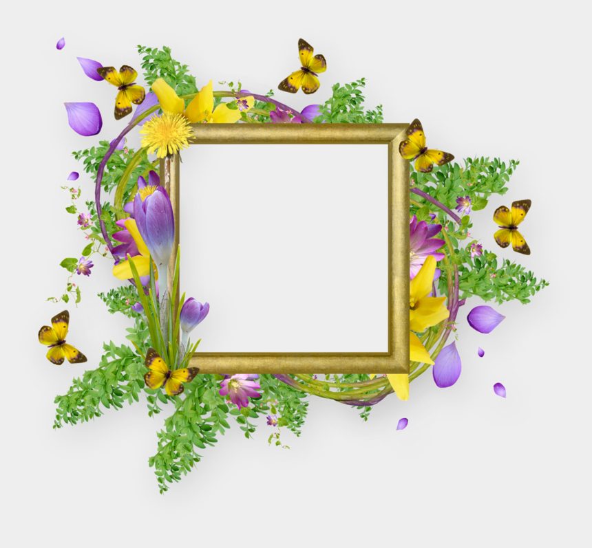 clipart cadre, Cartoons - Flower Borders And Frames Design Png