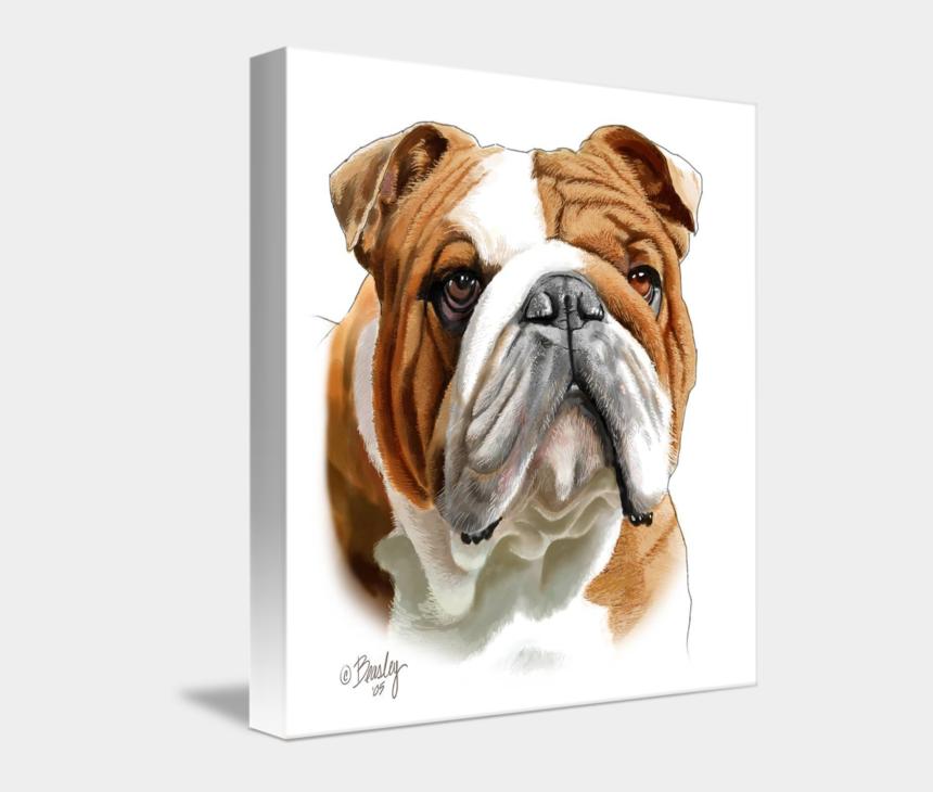 english bulldog clipart, Cartoons - English Bulldog Art Print Of Original Watercolor Painting - Bulldog White And Brown