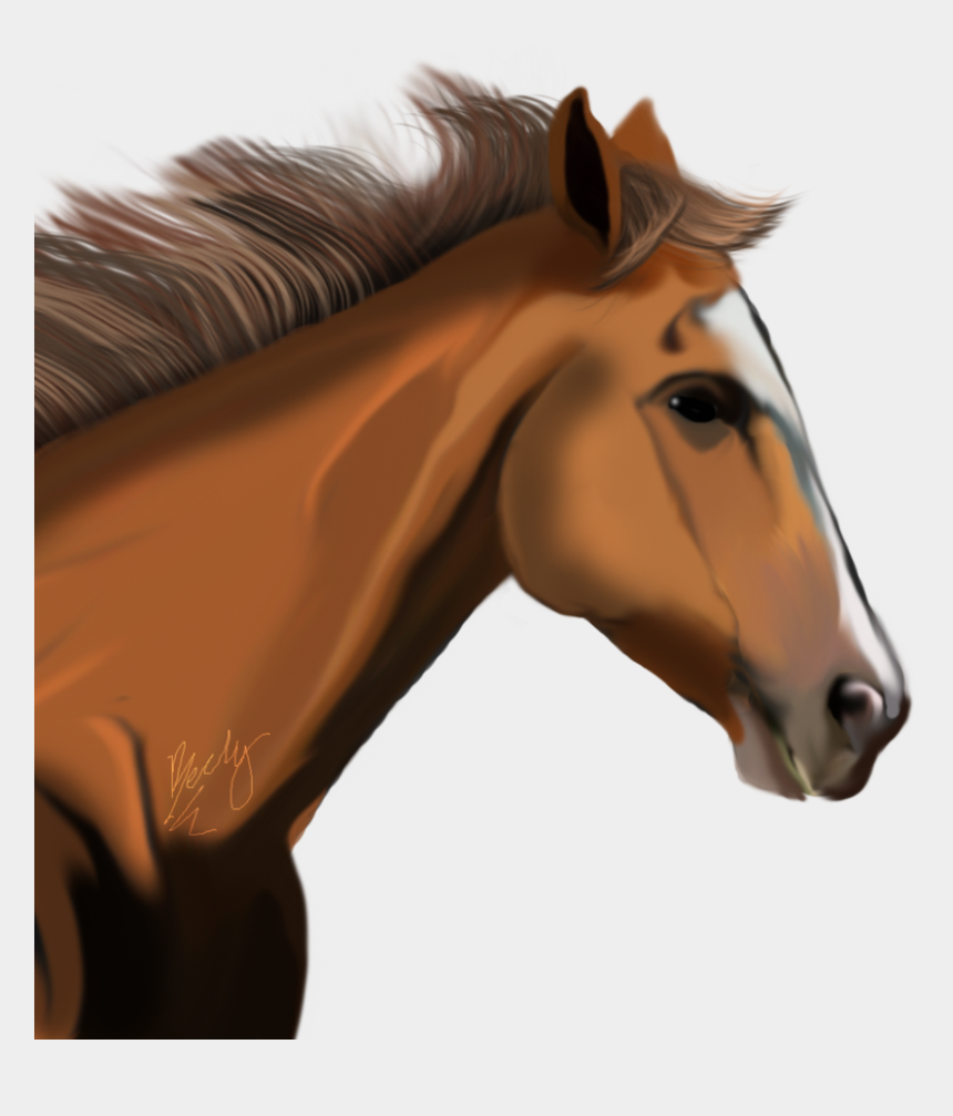 horse face clipart, Cartoons - Download Horse Png Transparent Images Transparent Backgrounds - Horse Head No Background
