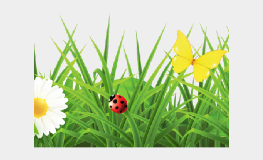 spring border clipart, Cartoons - Flower Png Images Hd