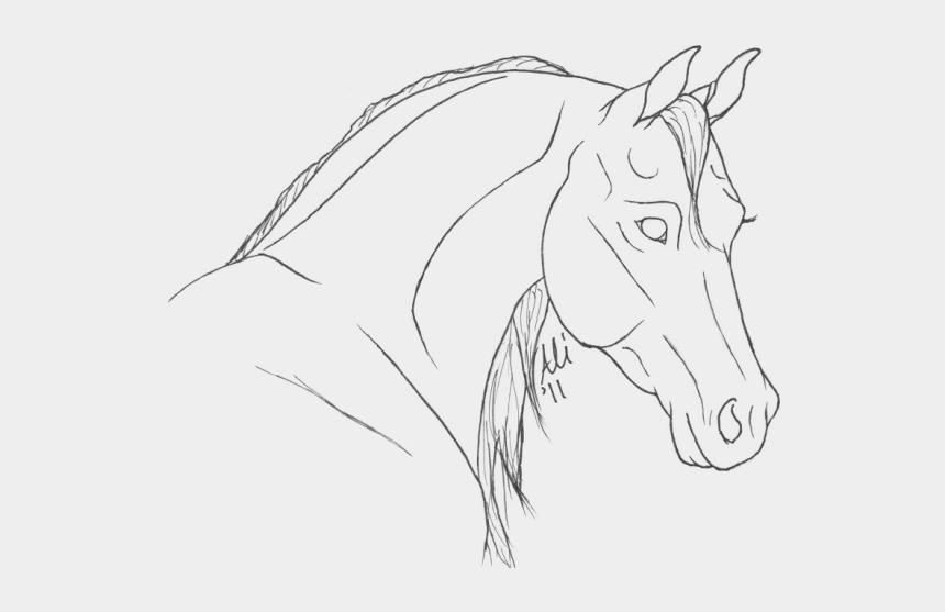 horse head clipart, Cartoons - Drawn Lines Arabian Horse Head - Horse Line Art Head
