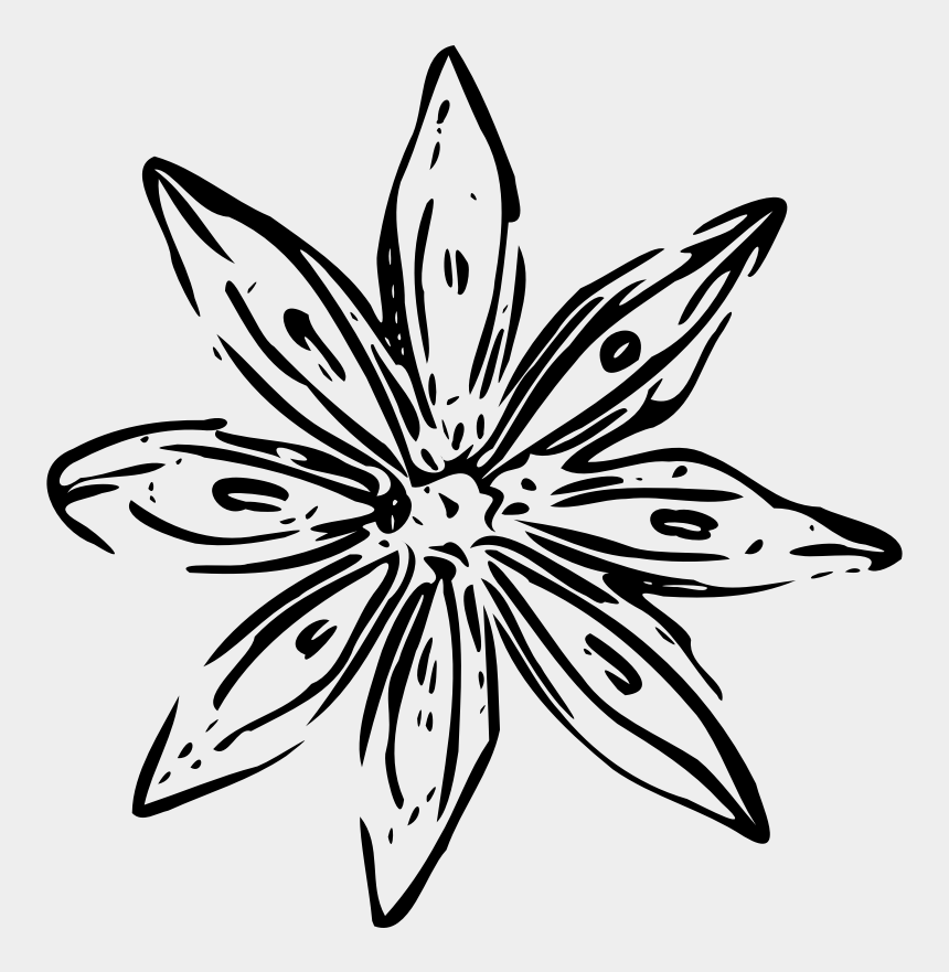 black star clipart, Cartoons - Clip Arts Related To - White Flower Outline Png