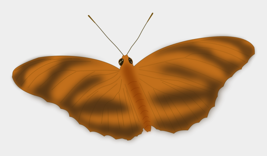 flying butterfly clipart, Cartoons - An Ethereal Butterfly Small Clipart 300pixel Size, - Butterfly