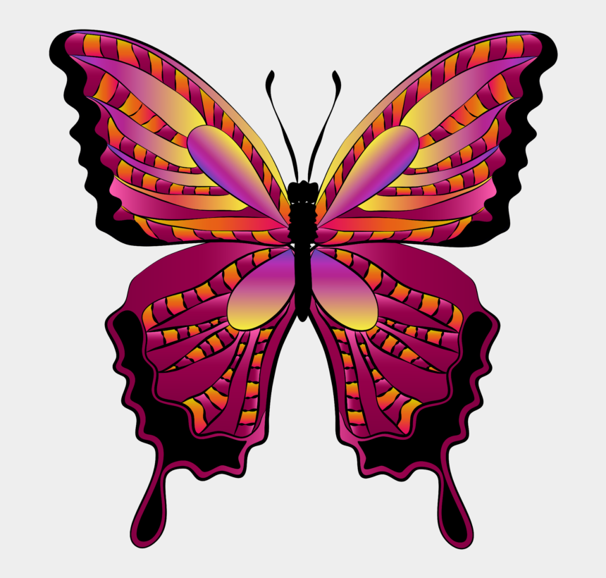 flying butterfly clipart, Cartoons - Butterfly Clipart