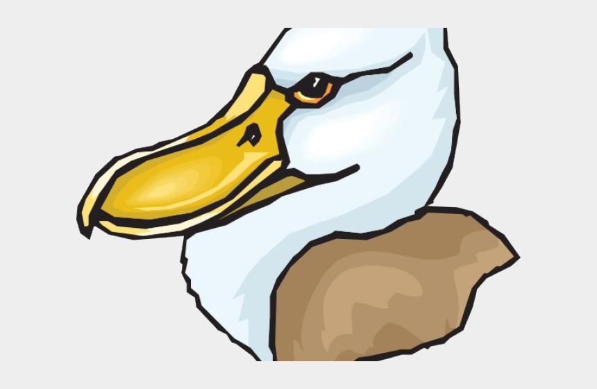 big bird clipart, Cartoons - Head Clipart Big Bird