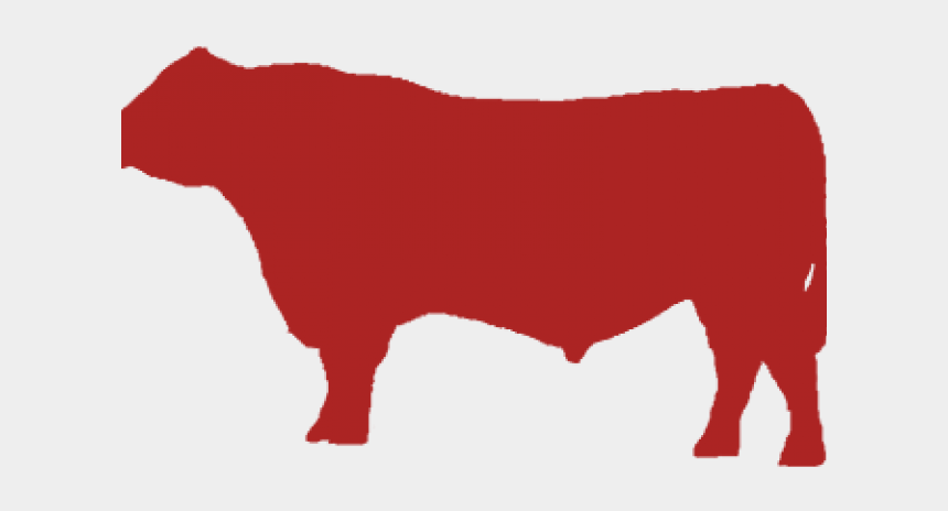 cattle clipart, Cartoons - Cattle Clipart Angus Cow - Dairy Cow