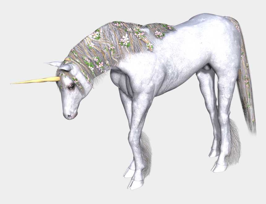 unicorn head clipart, Cartoons - Download - Unicorns Transparent