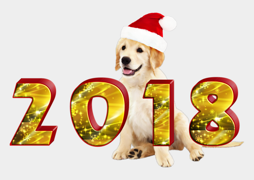 happy dog clipart, Cartoons - Happy Hands Transparent Png - Dog Catches Something