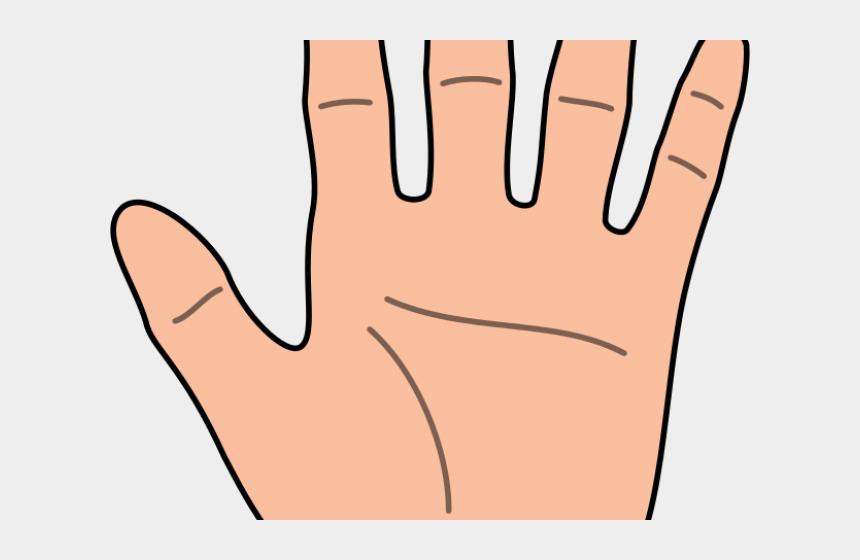 middle finger clipart, Cartoons - Fingers Clipart - Transparent Background Hand Clipart