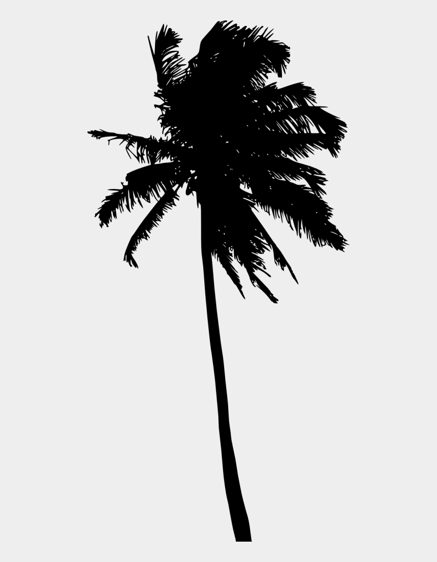 palm trees clip art, Cartoons - Palm Tree Black And White Png - Palm Tree Silhouette Png