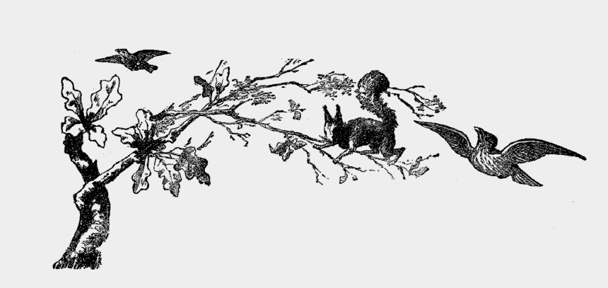 squirrel clipart black and white, Cartoons - Digital Animal Clip Art - Tree Clipart Black And White Corner