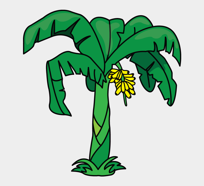 banana clipart black and white, Cartoons - Another Tutorial In Flowers And Plants Category Is - Banana Tree Drawing Easy