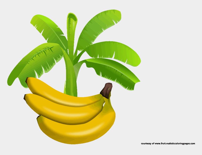 banana clipart black and white, Cartoons - Banana Clipart Banana Tree - ิ Banana Leaf Vector Png