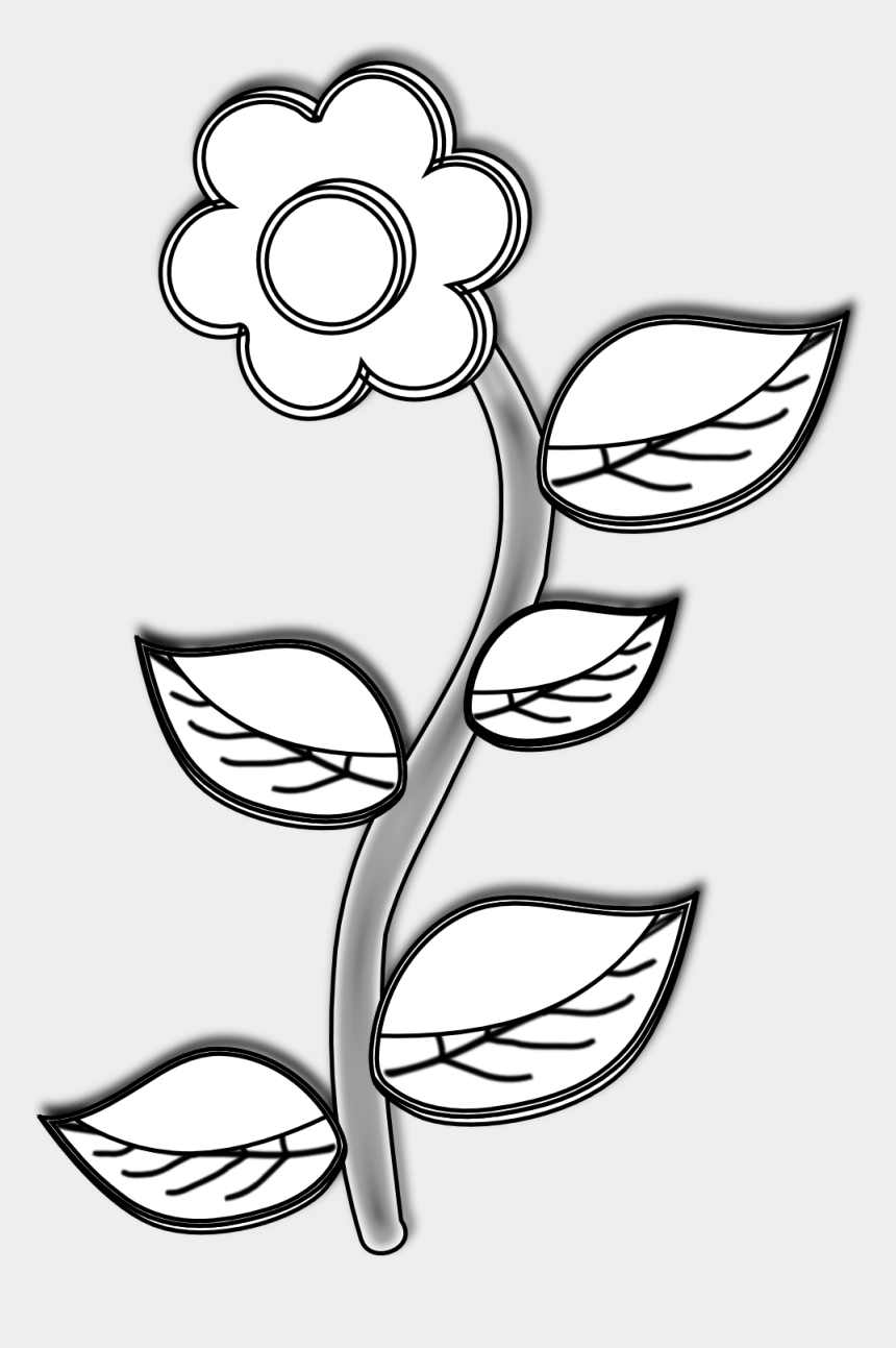 parts of a plant clipart, Cartoons - Clipart Of Drawings, Plant And And Plant In - Drawing
