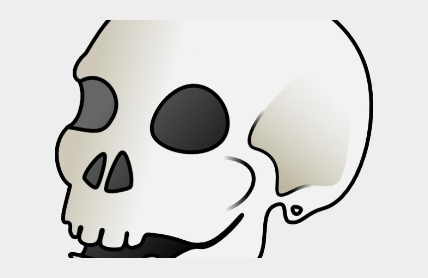 skeleton head clipart, Cartoons - Skeleton Head Clipart Small Skull - Skull Clip Art