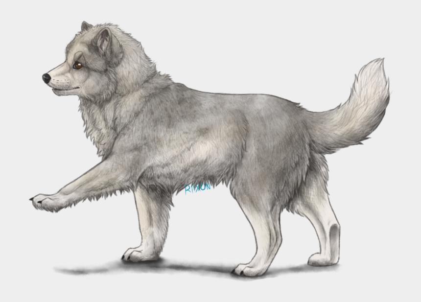 arctic fox clipart, Cartoons - Arctic Fox Cub By Riixon Plus - Drawing