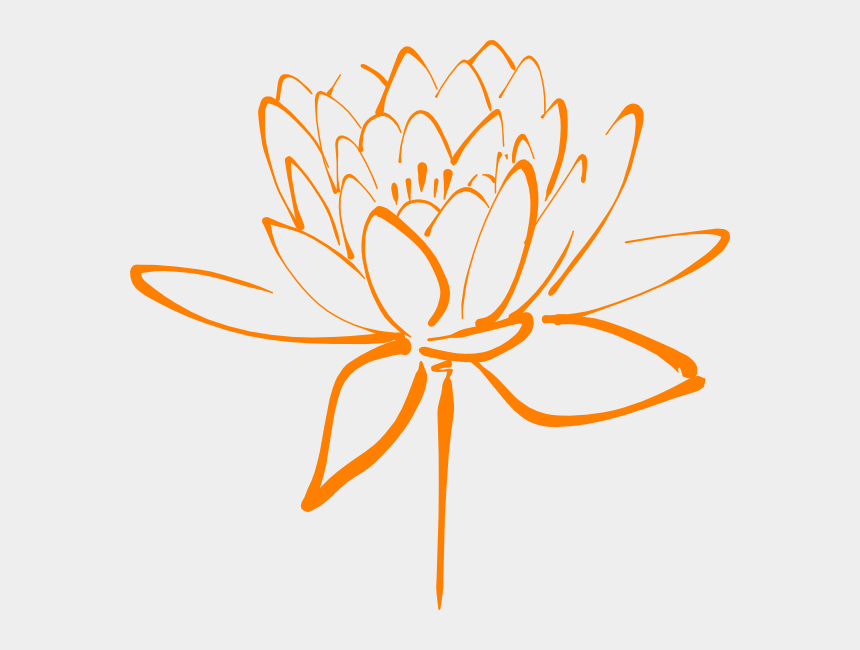 Orange Flower Clipart Png Lotus Black And White Clip Art