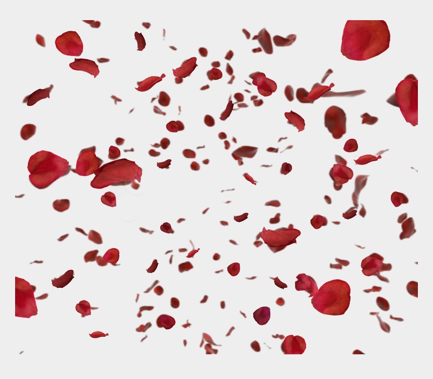 flower petal clipart, Cartoons - Red Rose Petals Png - Red Rose Clipart Petals