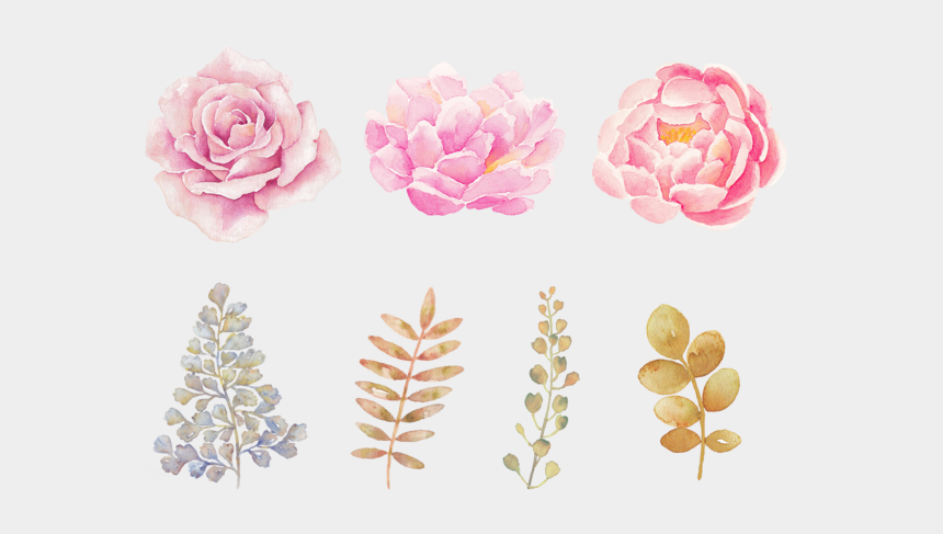 free watercolor flower clipart, Cartoons - Watercolor Flowers Png Transparent Background - Transparent Background Watercolor Flower Png
