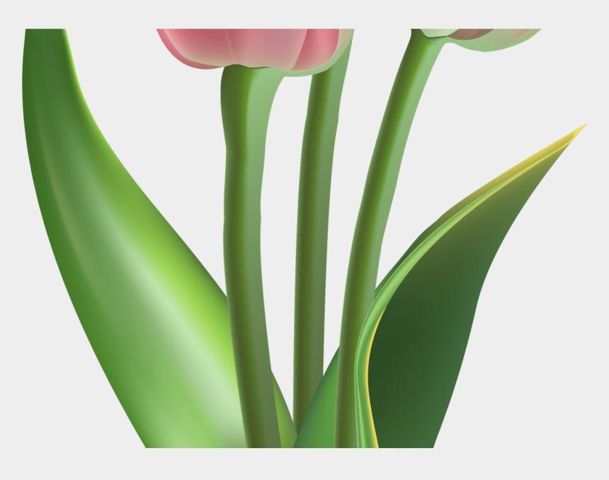 tulip flower clipart, Cartoons - Red Transparent Tulips Flowers Clipart 10pcs Tulip - Tulip