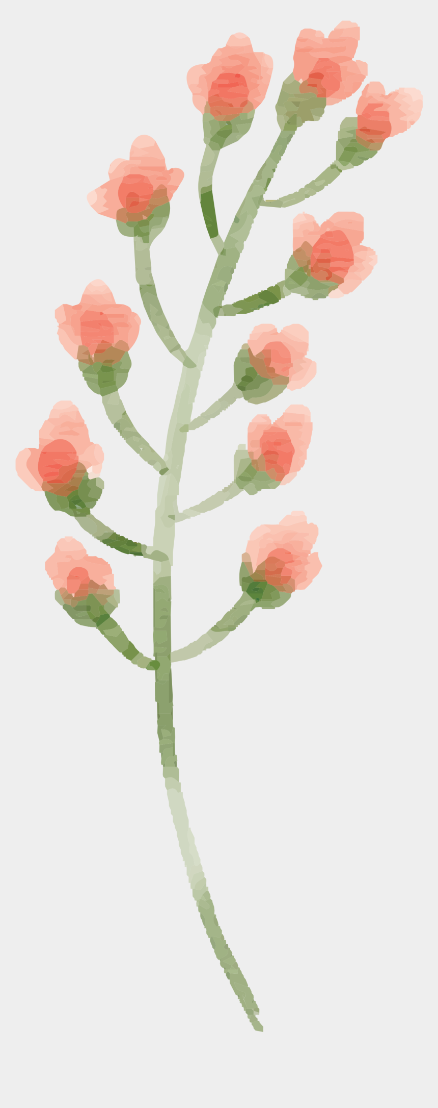 free watercolor flower clipart, Cartoons - Free Watercolor Flower Images Peach Delight - Peach Flower Watercolor Png