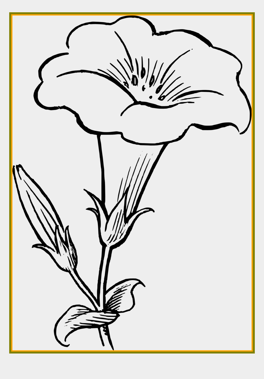 flower clipart outline, Cartoons - Fascinating Simple Black And White Best Pics Ⓒ - Yellow Kaner Flower Drawing
