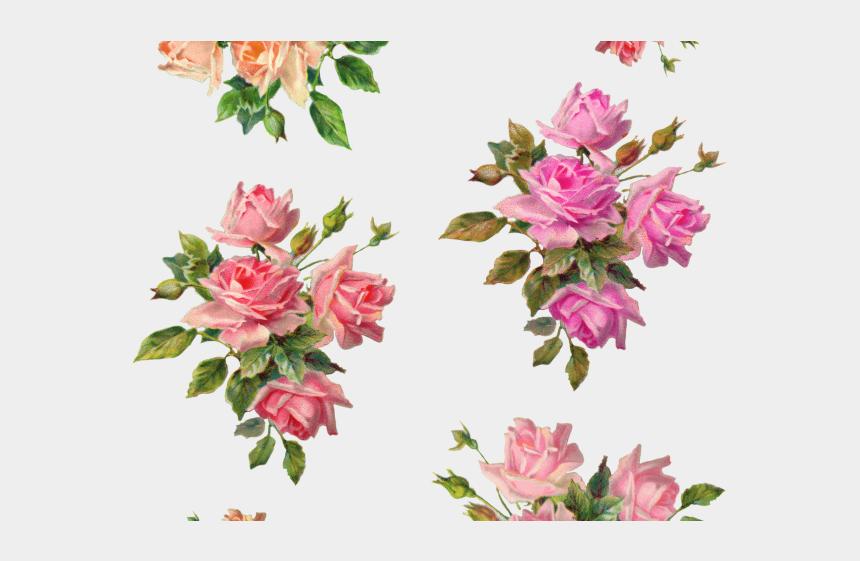 vintage flower clipart, Cartoons - Vintage Flower Clipart Wonderful - Garden Roses