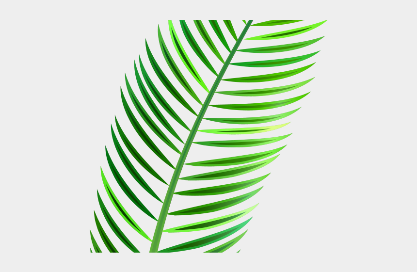 leave clipart, Cartoons - Green Leaves Clipart Coconut Leave - Tropical Leaf Watercolor Png