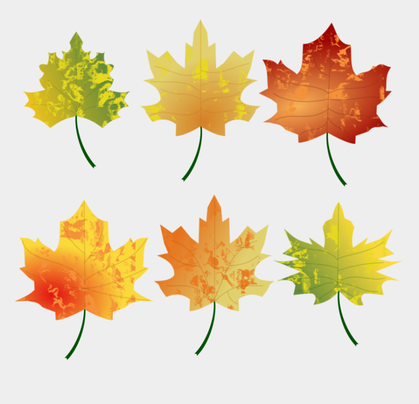 free clipart autumn leaves, Cartoons - Fall Leaves Graphic Autumn Colours Fall Free Vector - Autumn Colours Leaves